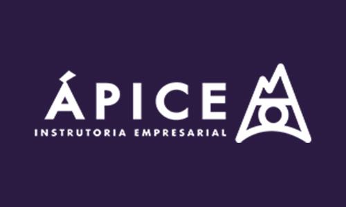 Ápice Instrutoria Empresarial